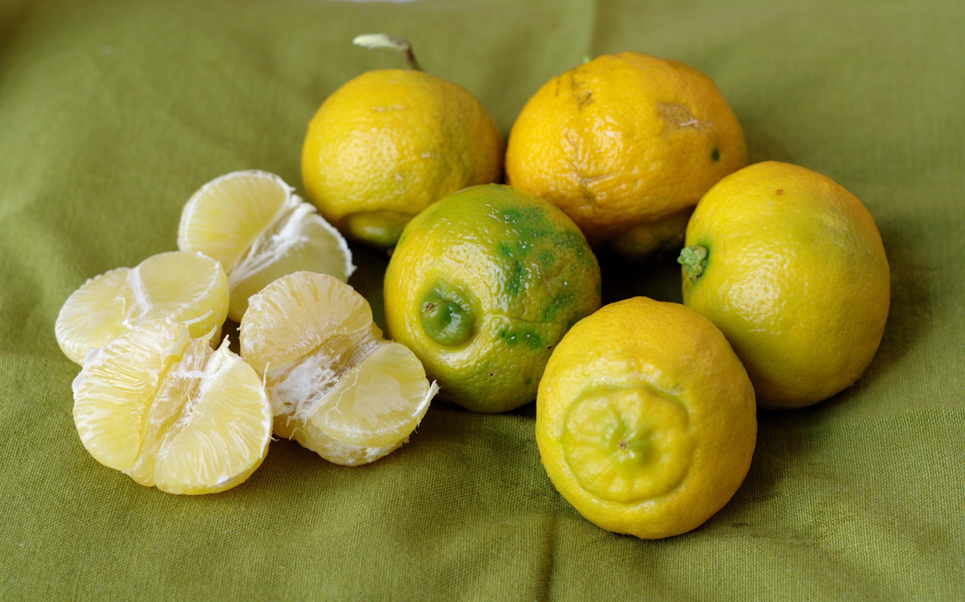 Piante Da Frutto Antiche : Piante da frutto antiche non dimenticare flora et