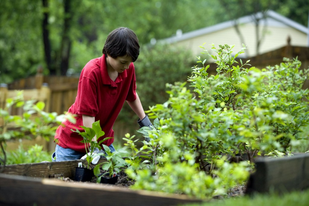 Young boy gardening outdor