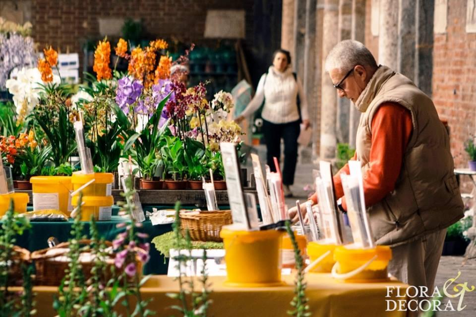 Flora2015-Spring 9