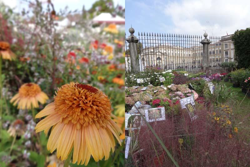 edizione-autunnale-flora-et-decora-monza
